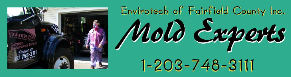 Mold Testing CT header image